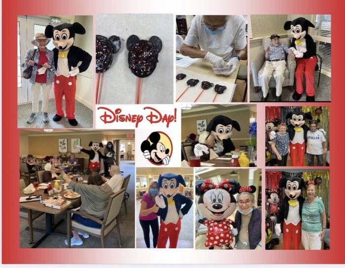 Disney Day collage